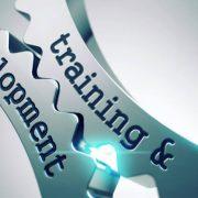 5 Hal Paling Penting Dalam Pelatihan & Pengembangan Karyawan